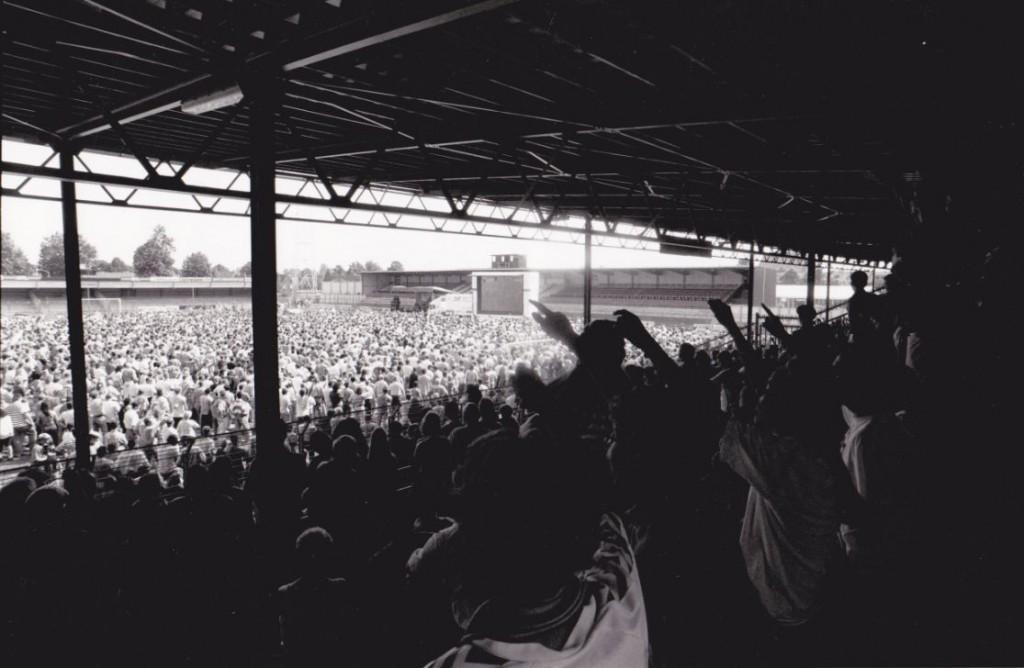 8000 fans